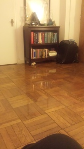 So much flood.
